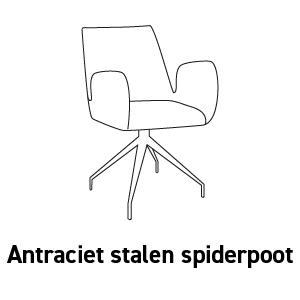 Antraciet stalen spiderpoot